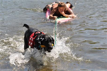 Záchranářští psi trénovali na Matyldě