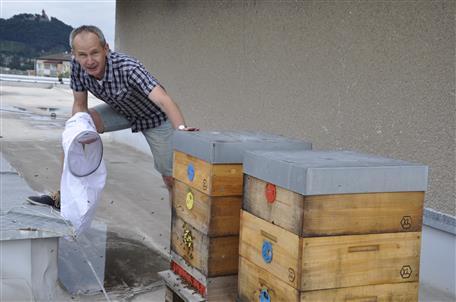 Tomáš Ondrášek ukazuje, kde jsou od konce května umístěné včely na střeše městské knihovny.